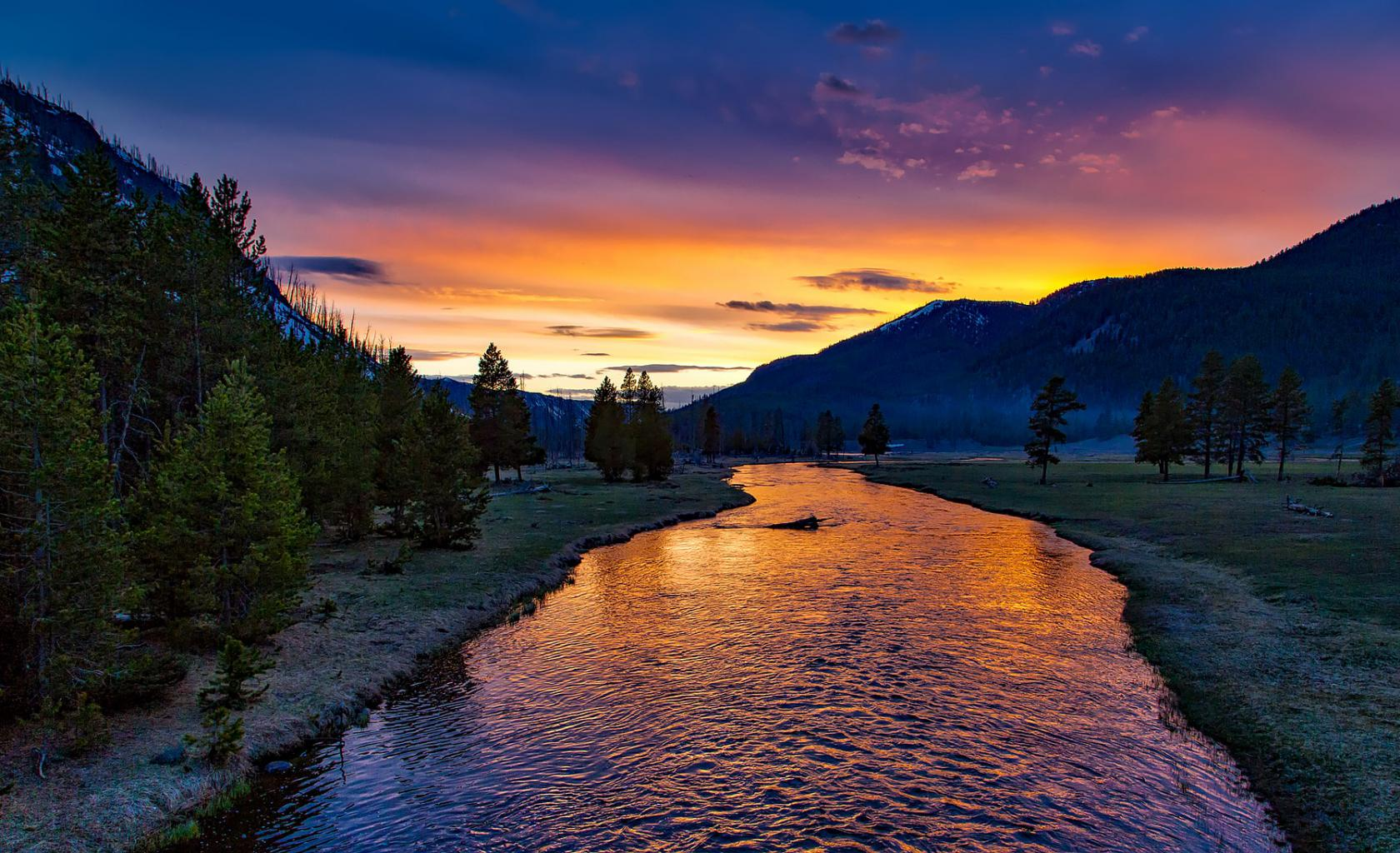 Yellowstone National Park Amerika